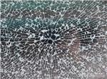 防砸丝网钢化玻璃