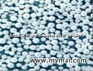 超活性纳米二氧化钛