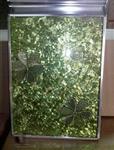 钛金隔断玻璃