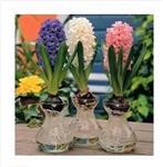 台式小花瓶099