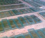 山东复合灌浆型防火玻璃厂家
