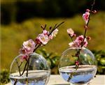 微景观53555金冠娱乐城官网 玻璃花瓶