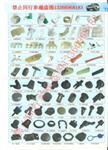 1-5页汽车装饰 塑料扣 门板 机盖 扣 车牌扣
