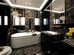 3.2-6mm浴室装饰黑玻