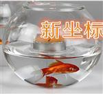 烛台花瓶鱼缸146