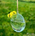 耐高温玻璃插花瓶