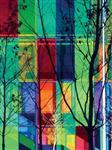 河北彩色夹胶玻璃