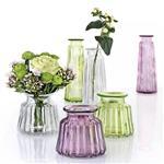 玻璃养花器