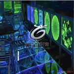 廣州激光內雕玻璃加工