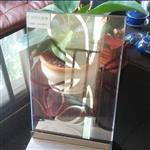 广东工艺夹丝玻璃