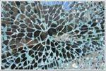 庆阳冰花玻璃