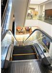 山东超市扶梯10分六合彩—十分彩大发官方