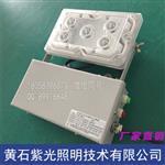 配電房GAD605-J應急燈|NFE9178低頂燈參數