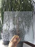 河北厂家直销各种压花玻璃,规格齐全