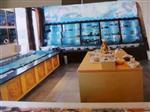 海产档口海鲜鱼池设计,广州定做生鲜店制冷鱼池费用
