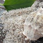天津圓粒海砂  1-2mm2-4mm天然海沙優質海砂