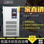 低温恒温浴槽DFY-50L实验化工用加热制冷循环泵