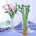 玻璃花瓶富貴竹插花瓶簡約透明桌面裝飾瓶