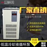 上海科升DLSB-30L低温冷却液循环泵
