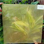 防滑夹丝玻璃广州富景玻璃