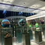 公司文化展示导光玻璃