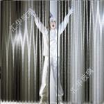 金丝玻璃 热熔玻璃 鼠毛玻璃 移门玻璃 屏风玻璃 家具玻璃