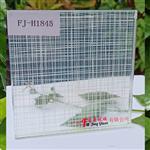 广州富景玻璃专业定制夹丝玻璃夹绢玻璃