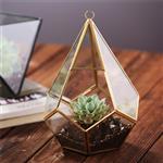 Geometric Glass Terrarium and Hanging