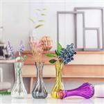 彩色一枝花水培玻璃花瓶