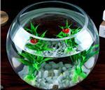 玻璃瓶创意圆型玻璃鱼缸透明水培瓶桌面装饰瓶