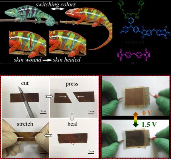 电子科技大学教授贾阳春在电致变色智能窗领域取得新进展