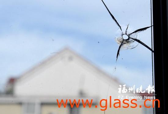 公司钢化玻璃4天内两次被钢珠击穿 幸无人员受伤