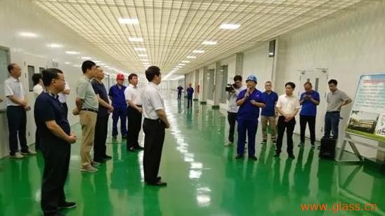 洛阳市市长刘宛康前往龙海玻璃考察调研