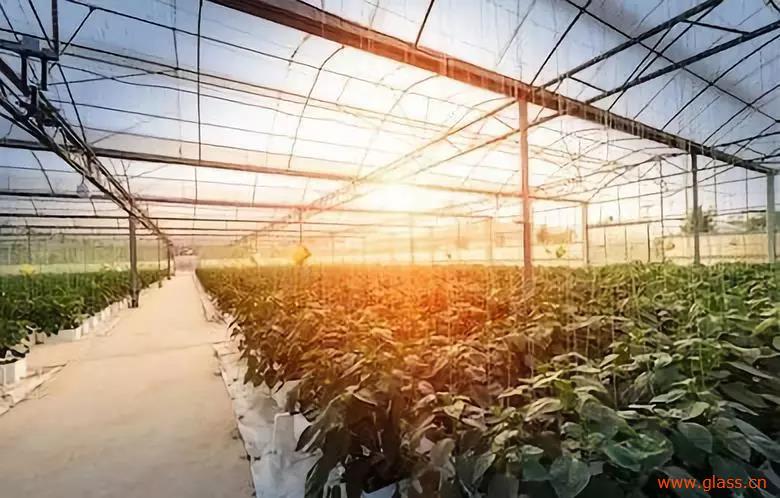 玻璃生态温室是如何节能降温的
