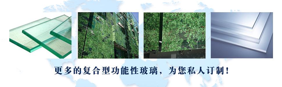 浙江鼎坚玻璃有限公司企业形象图片