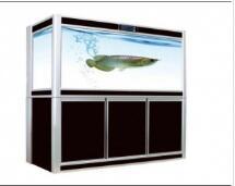 连连有鱼鱼缸