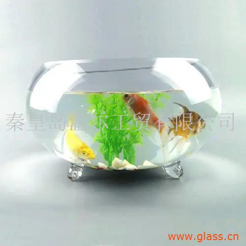 摆台鱼缸 迷你桌面鱼缸 鱼缸水族箱