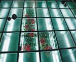 高强度防滑玻璃楼梯-高强度防滑玻璃地板