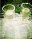 双层耐热玻璃杯子弹杯家居酒店用品