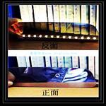 佛山|广州优选单向透视玻璃厂家-驰金