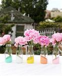 居家玻璃瓶 插花瓶