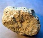 石家庄 钾长石 钠长石