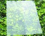 渭南|原片钢化镀膜玻璃  组件