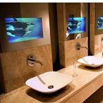 5厘防水鏡面電視玻璃
