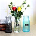 宽口透明玻璃花瓶桌面装饰插花瓶