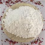 石家庄 灵寿信哲钙粉直销 轻质碳酸钙 含量高 超细碳酸钙