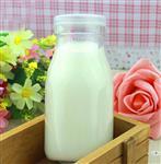 厂家批发直销无铅耐高温酸奶瓶100ml牛奶瓶 奶吧专用玻璃瓶定做