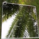 反射镜面玻璃钢化安全玻璃魔术镜