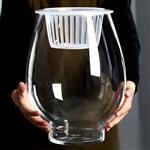 玻璃瓶水培玻璃花瓶空瓶绿萝瓶空龙蛋玻璃瓶