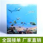 嘉颢 厂家加工 3d 4d数码印刷钢化艺术玻璃